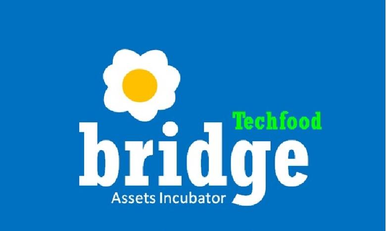 TECH FOOD BRIDGE S.L.